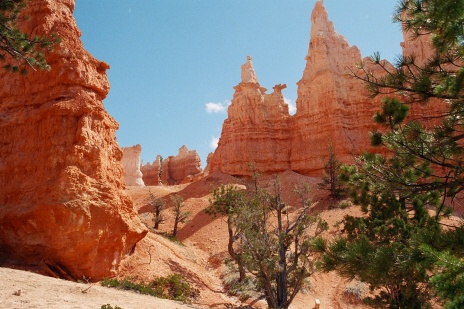 Bryce Canyon in April #6